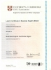 Level 2 Certificate in Business English